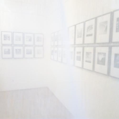 2021-500px-web--herbertkoeppel-photographs-and-workshops-IMG_20210130_161717.jpg
