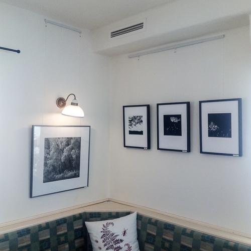2021-500px-web--herbertkoeppel-prints-workshops-galleryIMG_20210603_113306.jpg