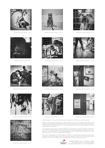 2021-500px-web--herbertkoeppel-prints-workshops-galleryRückblatt Tierschutz Austria.jpg