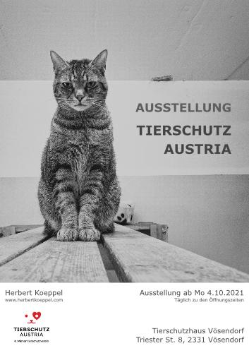 ausstellung-tierschutz-austria.jpg